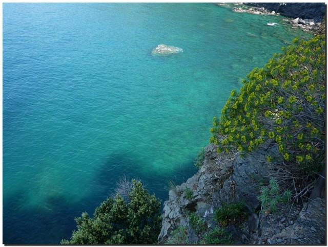 Сине-зеленая морская вода