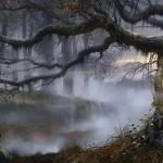 туман на болоте