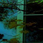 осень, ночь, окно
