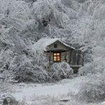 Домик в заснеженном лесу