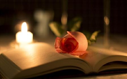 книга, роза, свеча