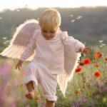 ребенок-ангел среди цветов