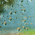 капли летнего дождя