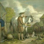 Фермер кормит лошадь